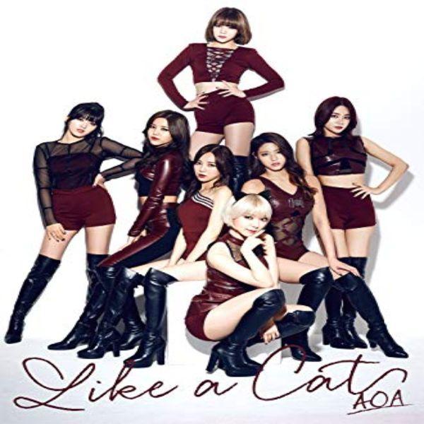 دانلود آهنگ کره ای گروه دختر (ای او ای) AOA با نام (مثل یک گربه) Like a Cat