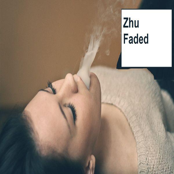 دانلود آهنگ (ژی یو) Zhu با نام (فاسد شده-پژمرده) Faded