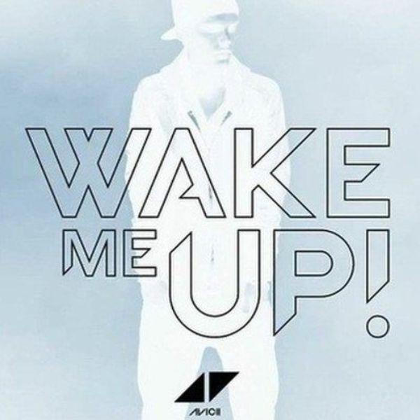 دانلود موزیک ویدیو (آویچی) Avicii & Aloe Blacc با نام (بیدارم کن) Wake Me Up